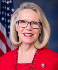 photo of Representative Carol Miller